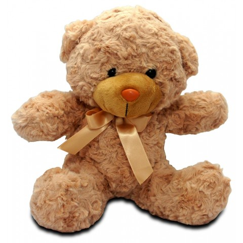 Hugs and Kisses Teddy Bear