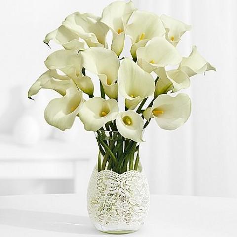 Gorgeous White Lilies