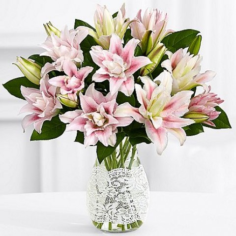 All Time Classic Lilies