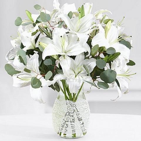Peace & Prayer Lilies