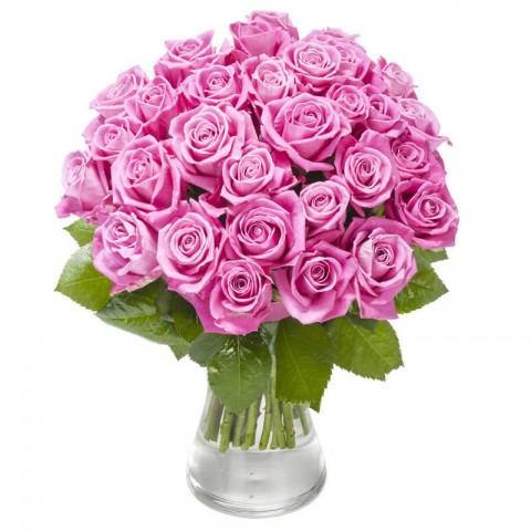 Roses of Plenty