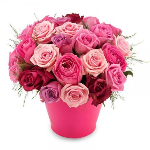 Artful Roses