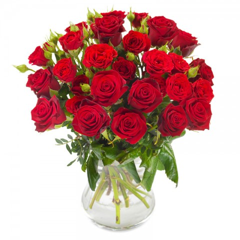 Bountiful Red Roses