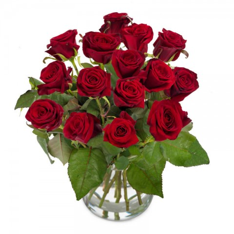 Red roses of Perfection