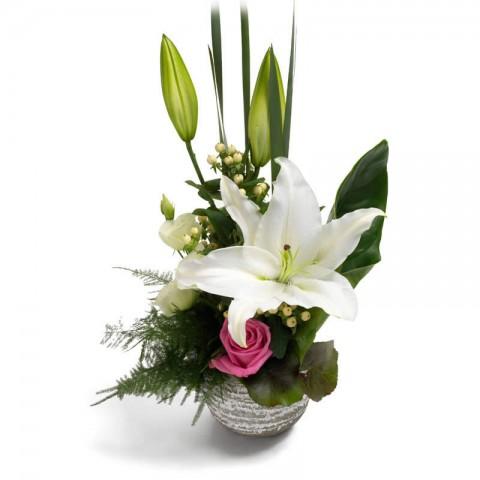 Classy Lilies