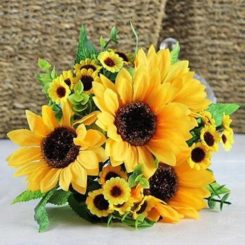 Popular Sunflower